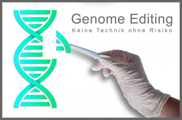 Genome-Editing – Keine Technik ohne Risiko